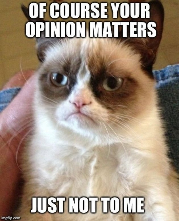 Grumpy cat s in a good mood Grumpy Cat meme Cast your vote share discuss and browse similar memes