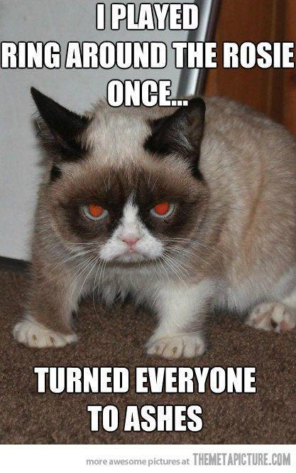 Grumpy Kitty Grumpy Cat Humor Cat Memes Gato