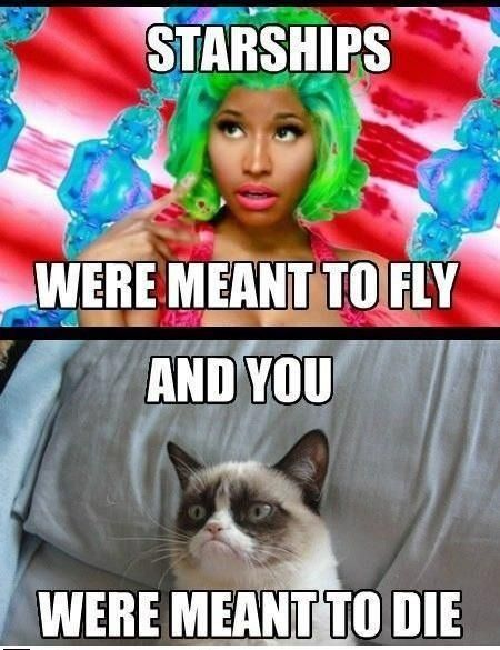 Grumpy cat funny cats the funniest cat website 450x585 Songs grumpy cat memes wants funnypictures
