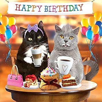 3D Holographic Birthday Card Funny Cute Cats Kittens Couple Cakes Balloons