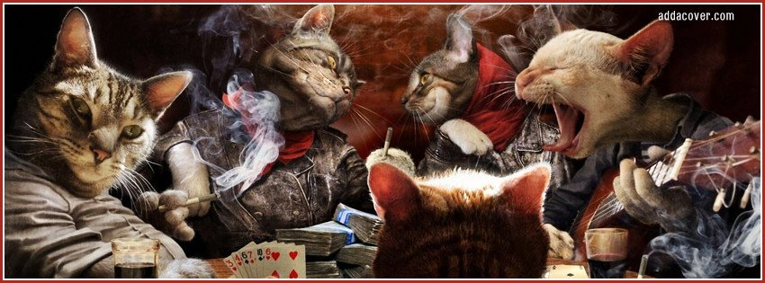 Poker Playing Cats Cover