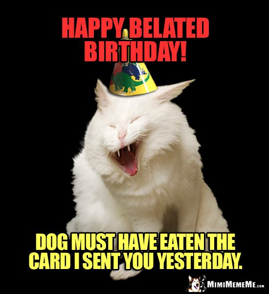 Laughing Cat Wearing Party Hat Says Happy Belated Birthday Dog must have eaten the