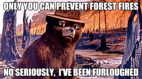 Smokey the Bear Government Shutdown Meme ly you can prevent forest fires