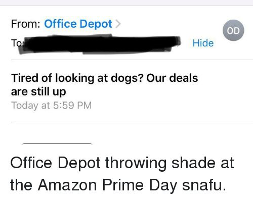 Amazon Amazon Prime and Dogs From fice Depot OD Hide Tired