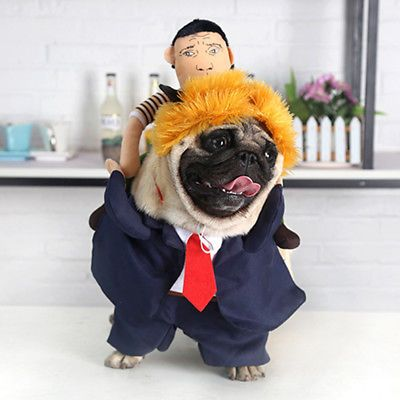 New Pet President Business Suit Costume Funny Dog Puppy Halloween Cloth with Wig