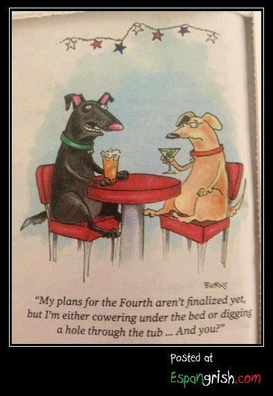 Fear of the Fourth DoggiesFunny StuffDog StuffTipsJuly