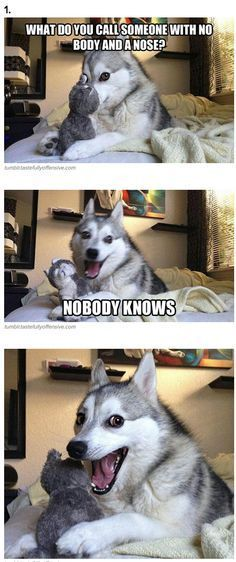 7 Pun Dog Puns That Will Instantly Brighten Your Day Funny Dog Jokes Dad