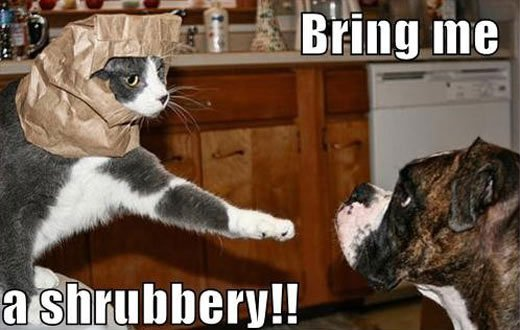 Bring Me A Shrubbery Funny Cat And Dog ments