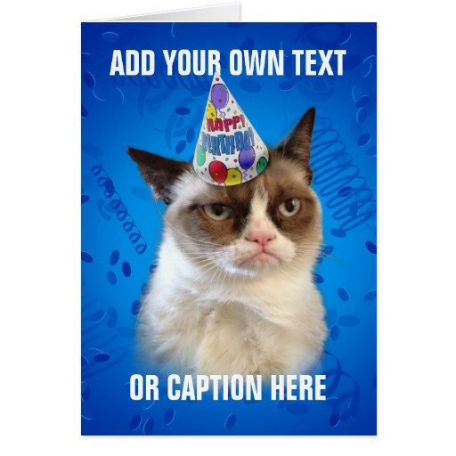 Grumpy Cat Birthday Card grumpy Cat Birthday Quotes Quotesgram