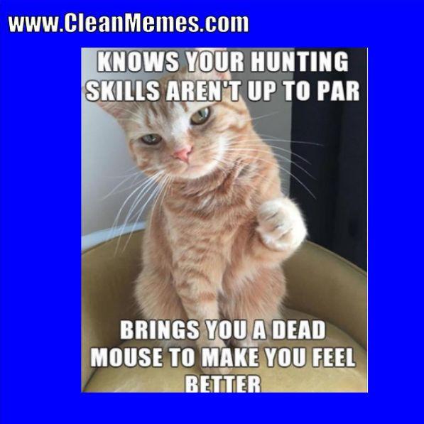 Clean Memes 01 02 2018