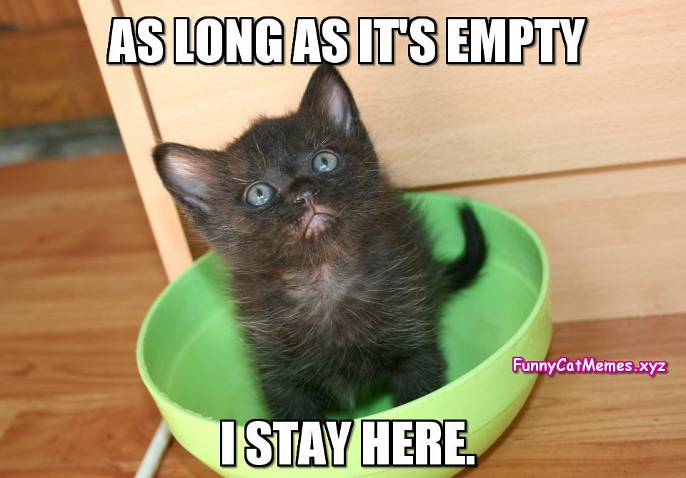 If The Bowl Is Empty…