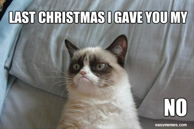 grumpy cat singing christmas songs