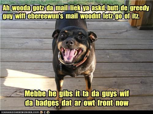 Watch the Stunning Funny Dog Memes Rottweiler
