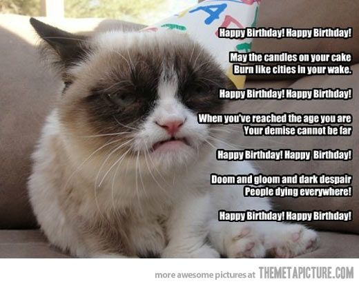 Birthday wishes from Grumpy Cat…