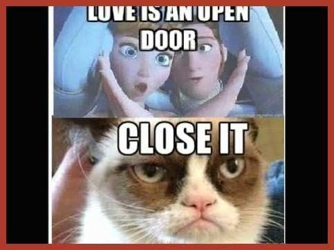 Unique Gallery Funny Grumpy Cat Memes Clean 40 New Funny Grumpy Cat