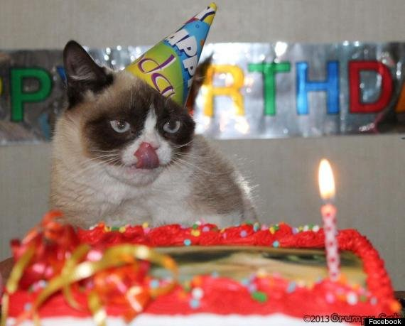 Watch the Suprising Unhappy Birthday Funny Memes Grumpy Cat