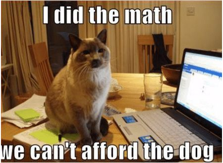 I did the math We can t afford the dog