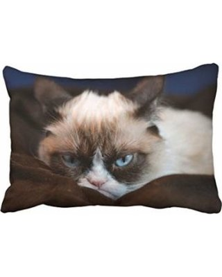 WinHome Funny Angry Cat Lie The Blanket Decorative Pillowcases With Hidden Zipper Decor Cushion Covers