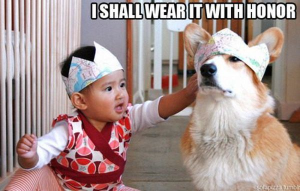 I shall wear it with honor baby and dog Animal Captions Funny Captions