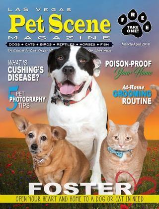 Las Vegas Pet Scene Magazine – March April 2018