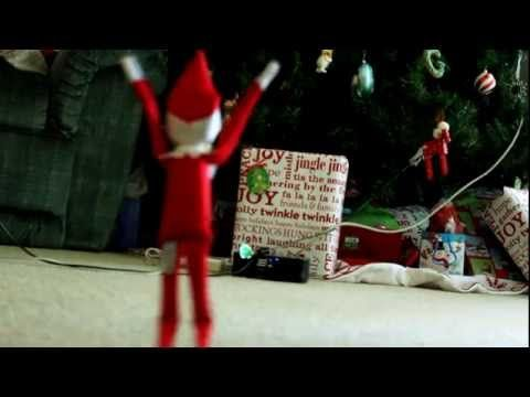 Catch the Incredible Crazy Elf On the Shelf Funny Cat Pictures