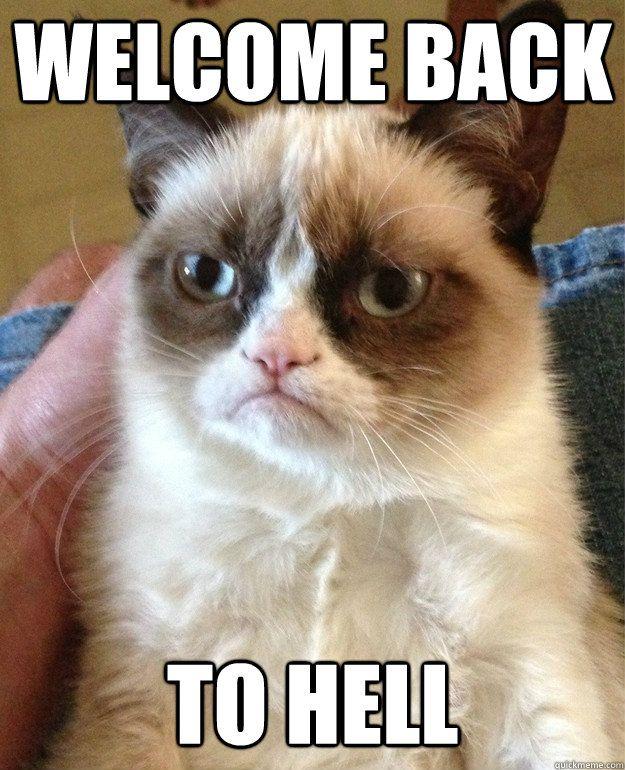 Wel e Back To Hell Cat Meme