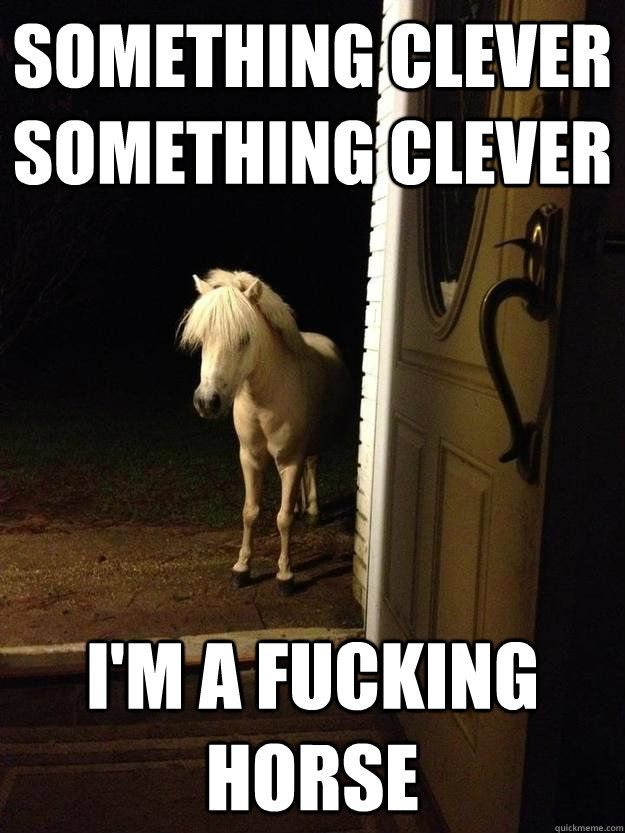 Something clever Something clever I m a fucking horse