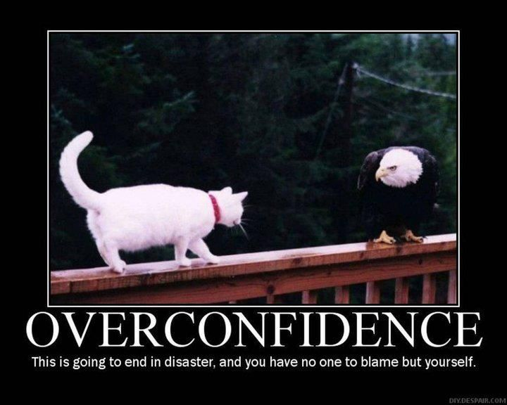Overconfidence can have its consequences Funny Motivational Funny Inspirational Quotes Funny