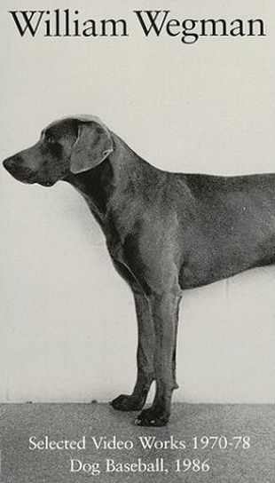 William Wegman Selected Video Works 1970 1978 Dog Baseball 1986