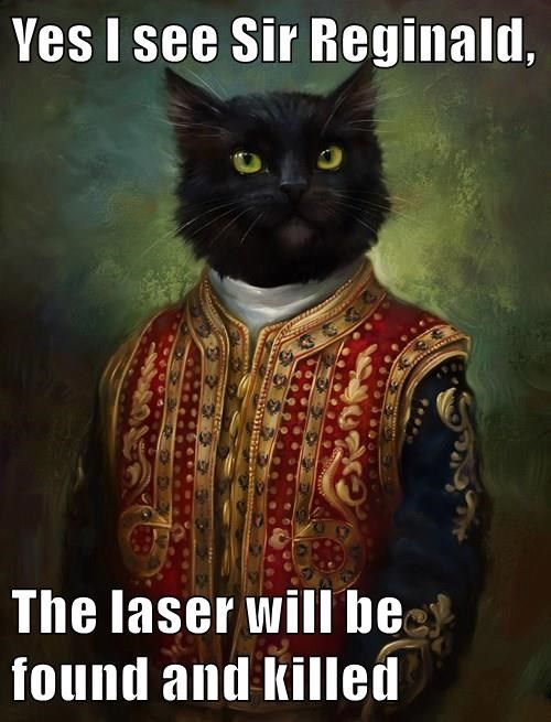animals captions laser Cats