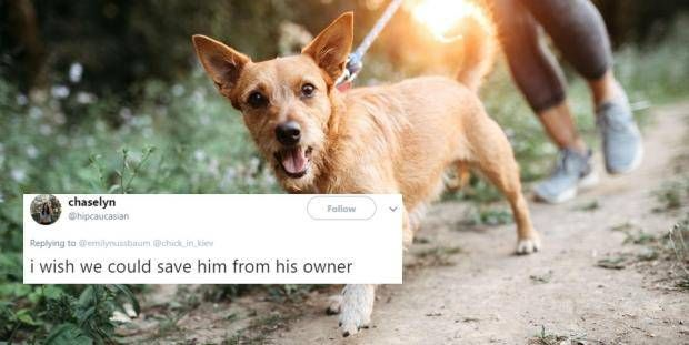 This man s homophobia was unmasked when his date suggested his dog might be