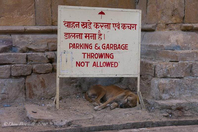india is filthy