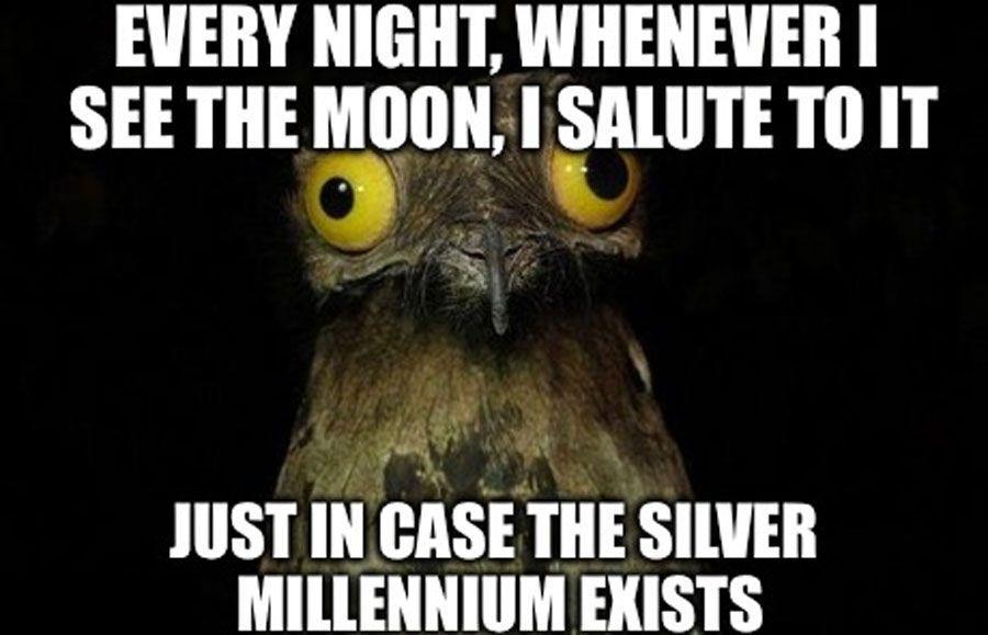 Owl Sailor Moon Anime Meme