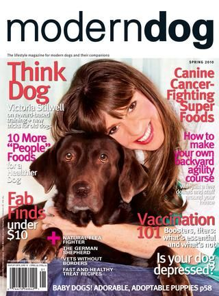 The lifestyle magazine for modern dogs and their panions