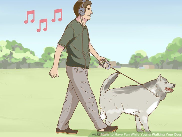 Image titled Have Fun While You re Walking Your Dog Step 5