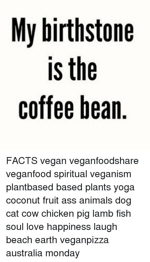 Animals Ass and Cats My birthstone is the coffee hean FACTS vegan veganfoodshare