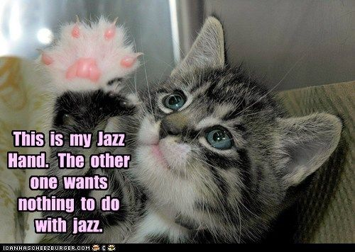 Cats claws dance fabulous Hall of Fame hand hazz hands jazz jazz hand kitten cats paw
