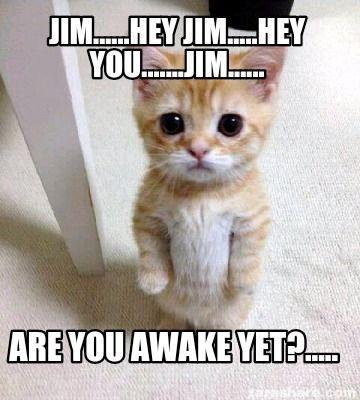 Cute Sad Cat Meme meme generator