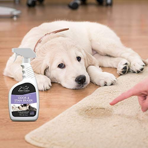 Amazon Emmy s Best Powerful Pet Odor Remover Color Saver and Urine Eliminator Deodorizer Exclusive Enzyme Carpet Cleaner Solution Takes Out Tough