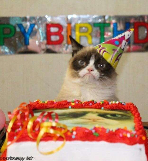Grumpy Cats Hates Birthdays