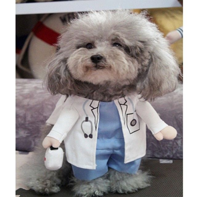 DogBaby Funny Cat Costume Doctor Suit Pet Dogs Clothes Uniform Clothing for Puppy Dogs Yorkieshire Chihuahua