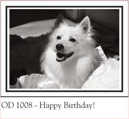 Doge Birthday Card Fresh Doggie Birthday Cards Dog Birthday Cards Dozor resume template online