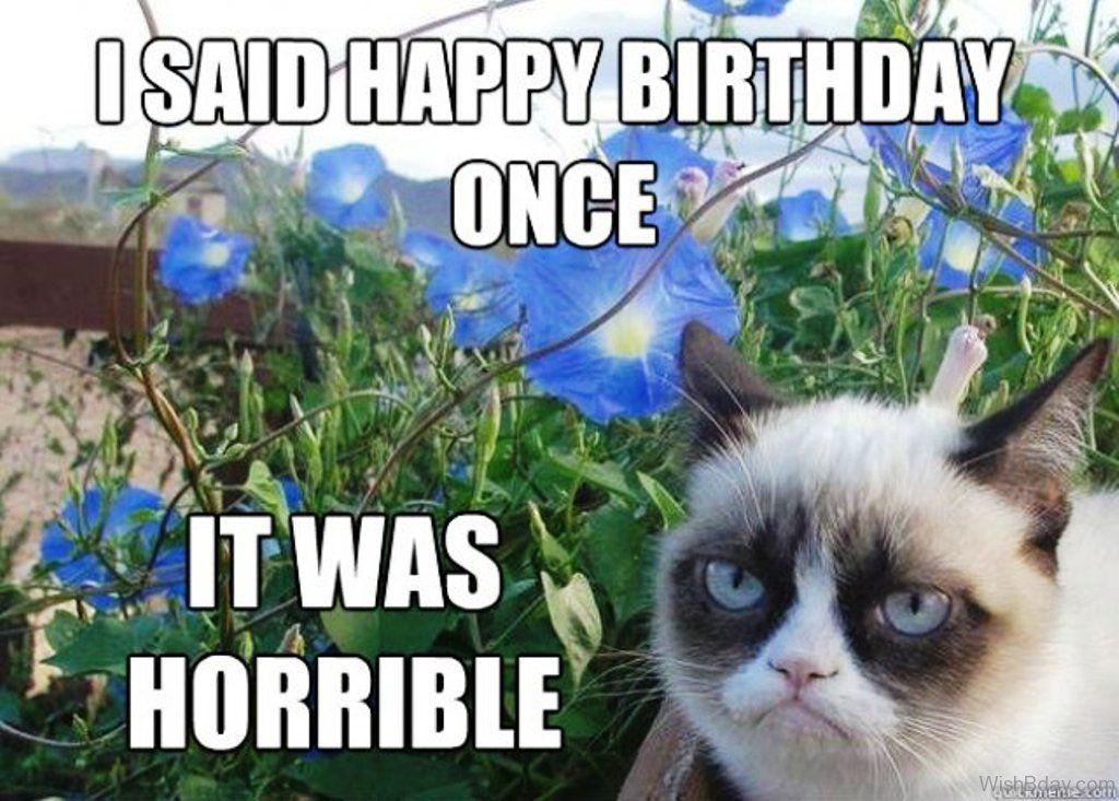 I Said Happy Birthday ce It Was Horrible