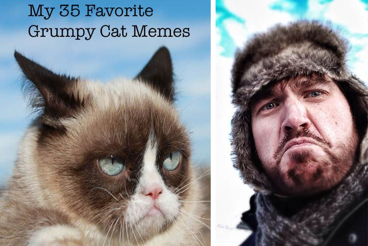Collect the Unbelievable Funny Grumpy Cat Memes for Kids Clean