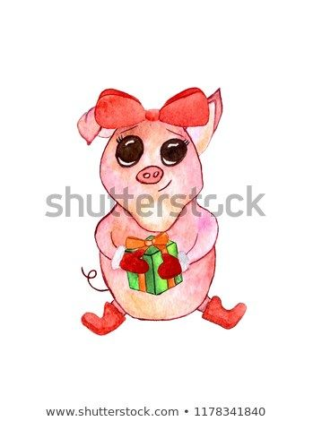 Watercolor symbol 2019 funny pig isolated on white background