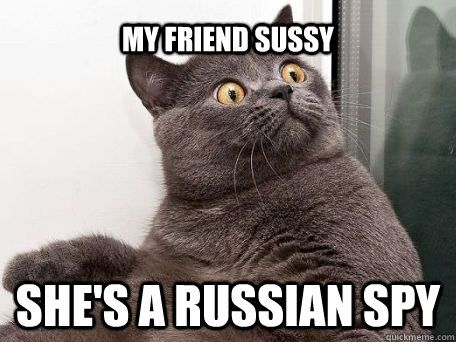 My friend sussy she s a russian spy conspiracy cat