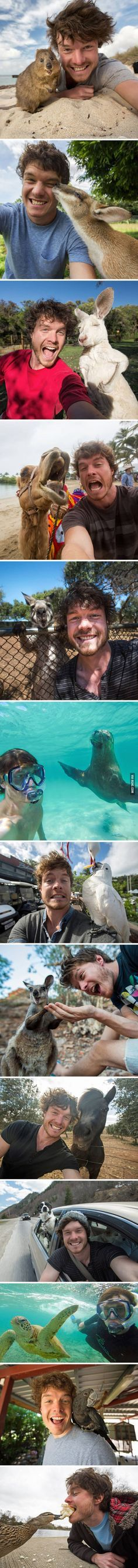 This Guy Mastered The Art Animal Selfies