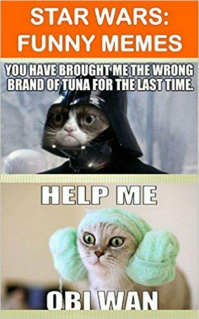 Starwars cat meme