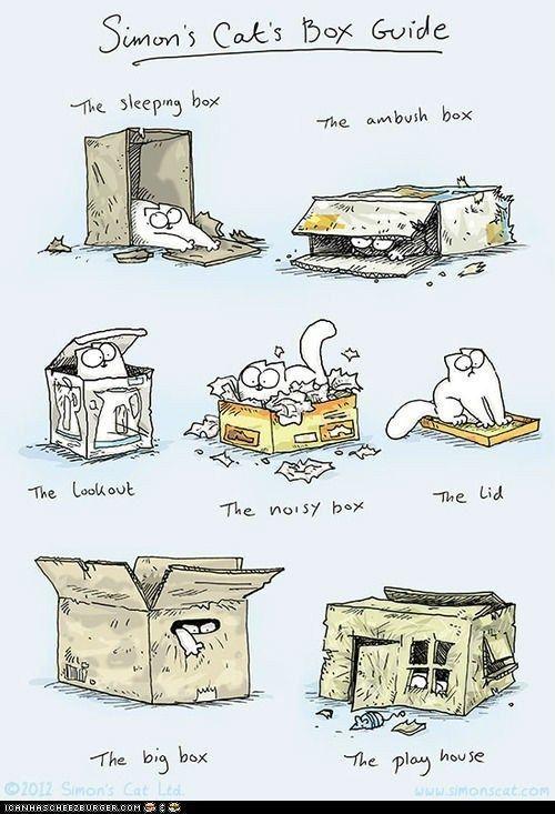 Simon s Cat s Box Guide