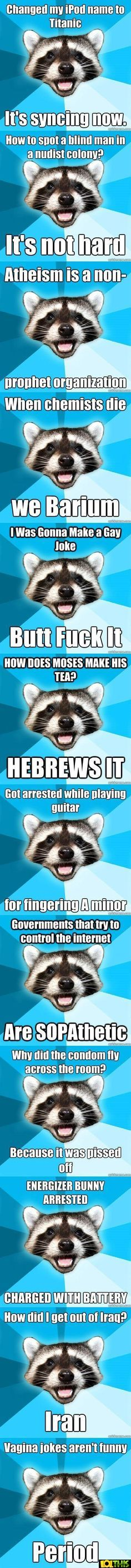 The cheesy joke raccoon loves to tell cheesy jokes This is a funny collection of pictures of a raccoon meme who says funny jokes